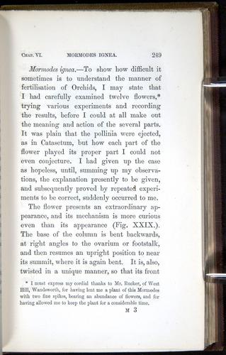 Image of Darwin-F800-1862-00249