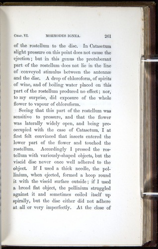 Image of Darwin-F800-1862-00261
