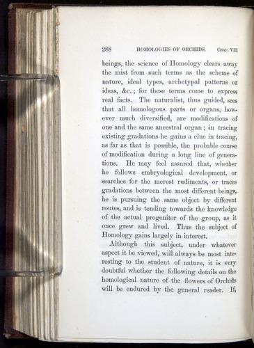 Image of Darwin-F800-1862-00288