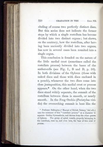 Image of Darwin-F800-1862-00320