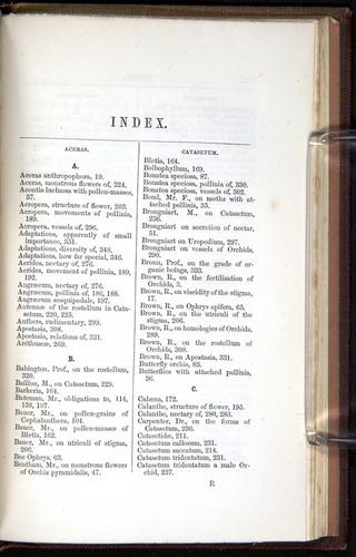 Image of Darwin-F800-1862-00361