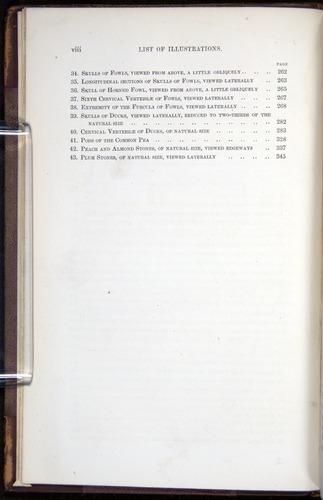 Image of Darwin-F878.1-1868-00000-z06