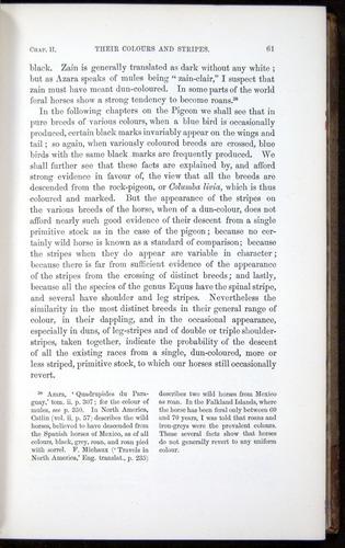 Image of Darwin-F878.1-1868-00061