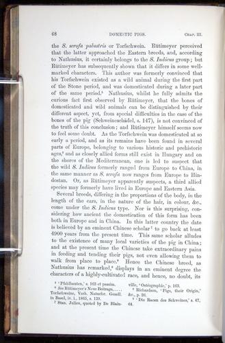 Image of Darwin-F878.1-1868-00068