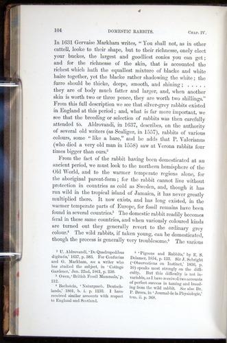 Image of Darwin-F878.1-1868-00104