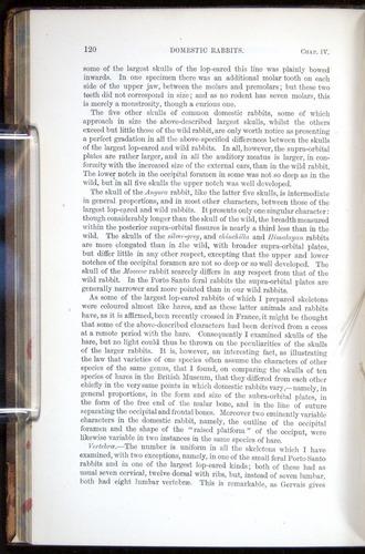 Image of Darwin-F878.1-1868-00120