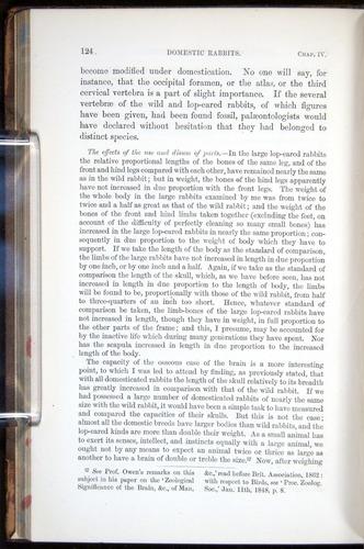 Image of Darwin-F878.1-1868-00124