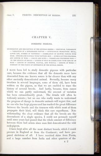 Image of Darwin-F878.1-1868-00131