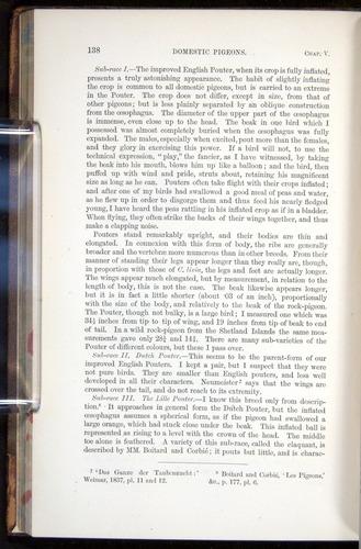 Image of Darwin-F878.1-1868-00138