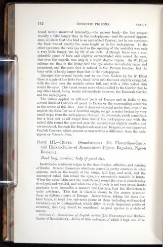 Image of Darwin-F878.1-1868-00142