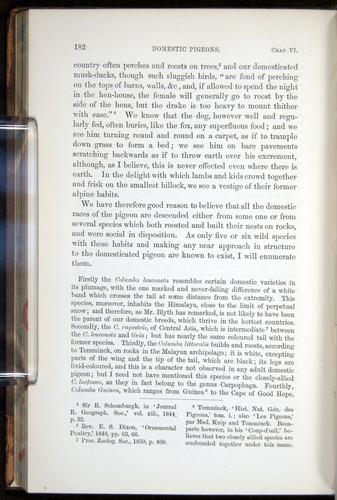 Image of Darwin-F878.1-1868-00182