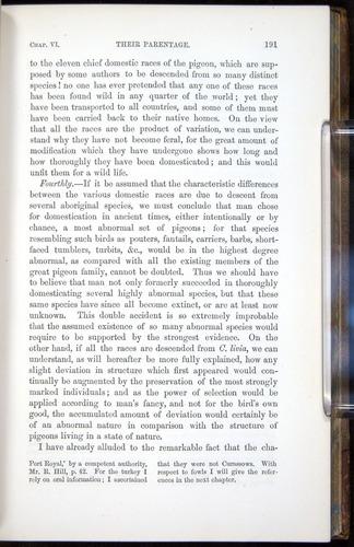 Image of Darwin-F878.1-1868-00191