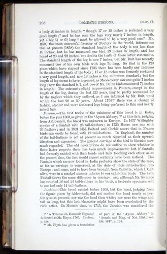 Image of Darwin-F878.1-1868-00208