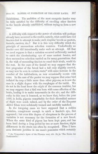 Image of Darwin-F878.1-1868-00217