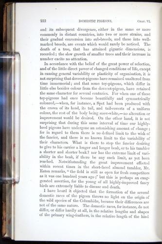 Image of Darwin-F878.1-1868-00222