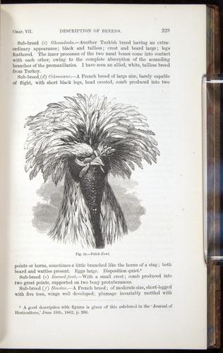 Image of Darwin-F878.1-1868-00229
