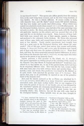 Image of Darwin-F878.1-1868-00234