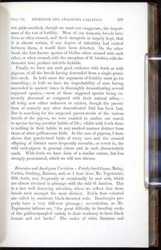 Image of Darwin-F878.1-1868-00239