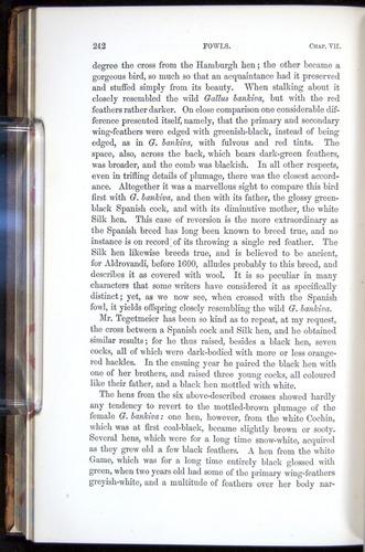 Image of Darwin-F878.1-1868-00242