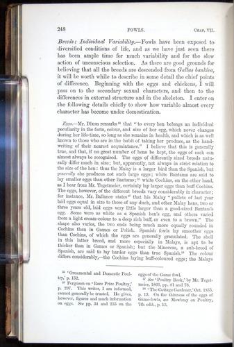 Image of Darwin-F878.1-1868-00248