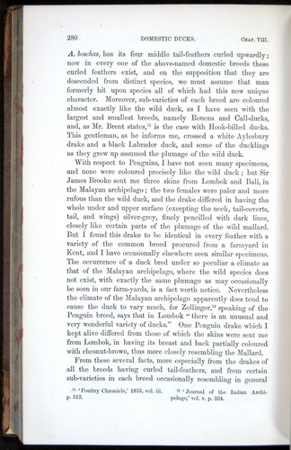 Image of Darwin-F878.1-1868-00280