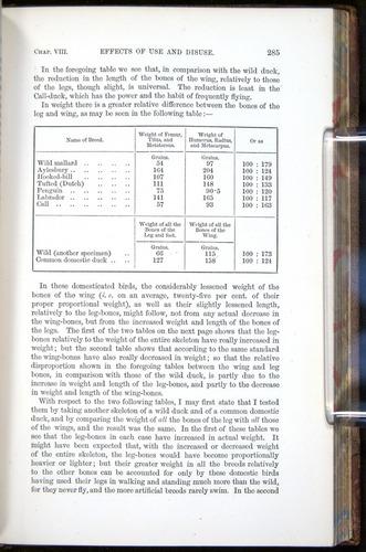 Image of Darwin-F878.1-1868-00285