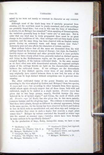 Image of Darwin-F878.1-1868-00325