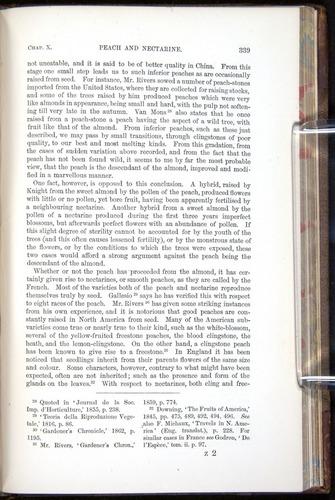 Image of Darwin-F878.1-1868-00339
