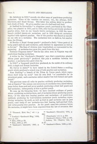 Image of Darwin-F878.1-1868-00341