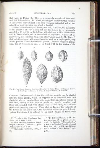 Image of Darwin-F878.1-1868-00345
