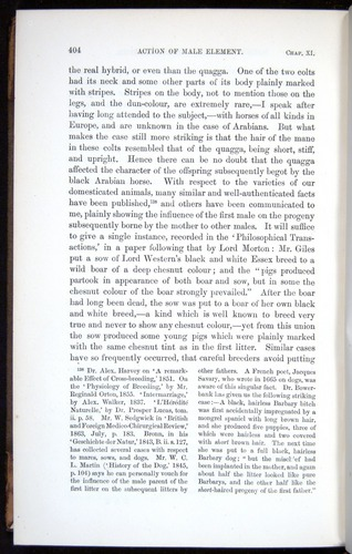 Image of Darwin-F878.1-1868-00404