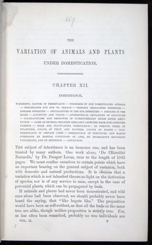 Image of Darwin-F878.2-1868-00001