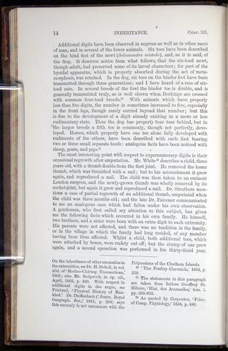 Image of Darwin-F878.2-1868-00014