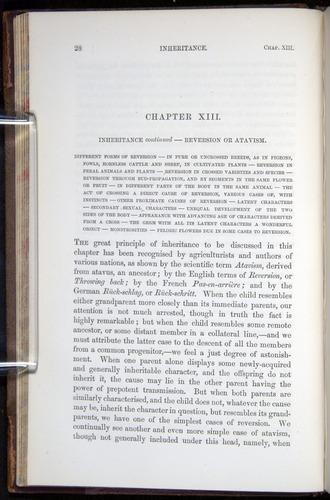 Image of Darwin-F878.2-1868-00028