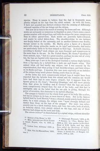 Image of Darwin-F878.2-1868-00042