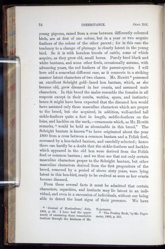 Image of Darwin-F878.2-1868-00054