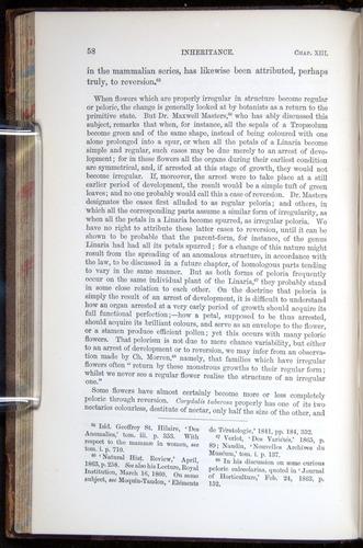 Image of Darwin-F878.2-1868-00058