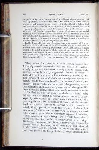 Image of Darwin-F878.2-1868-00060