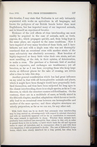 Image of Darwin-F878.2-1868-00117