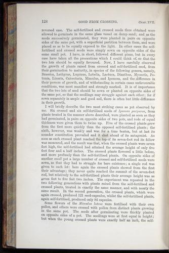 Image of Darwin-F878.2-1868-00128