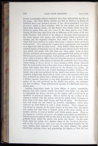 Image of Darwin-F878.2-1868-00134