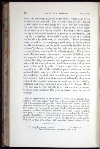 Image of Darwin-F878.2-1868-00136