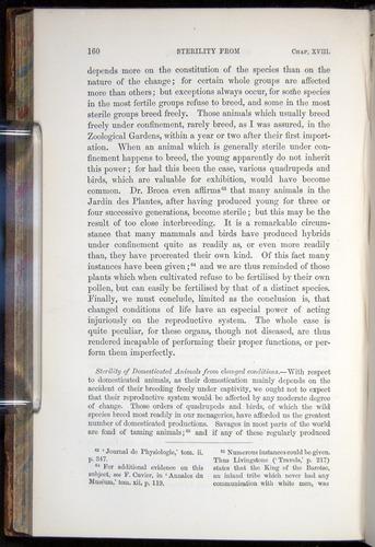 Image of Darwin-F878.2-1868-00160