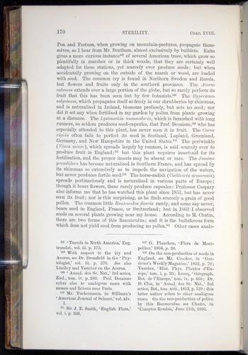 Image of Darwin-F878.2-1868-00170