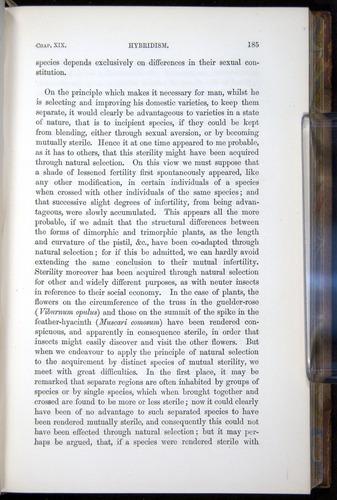 Image of Darwin-F878.2-1868-00185