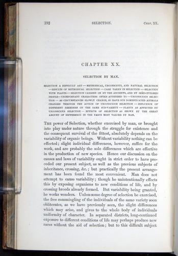 Image of Darwin-F878.2-1868-00192