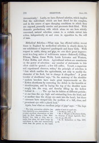 Image of Darwin-F878.2-1868-00194