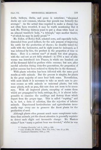 Image of Darwin-F878.2-1868-00199