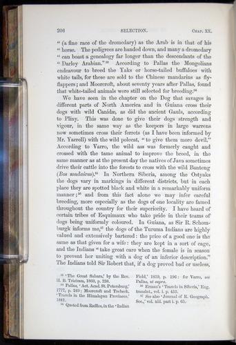 Image of Darwin-F878.2-1868-00206