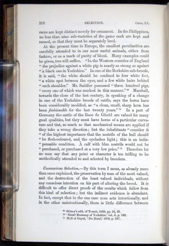 Image of Darwin-F878.2-1868-00210